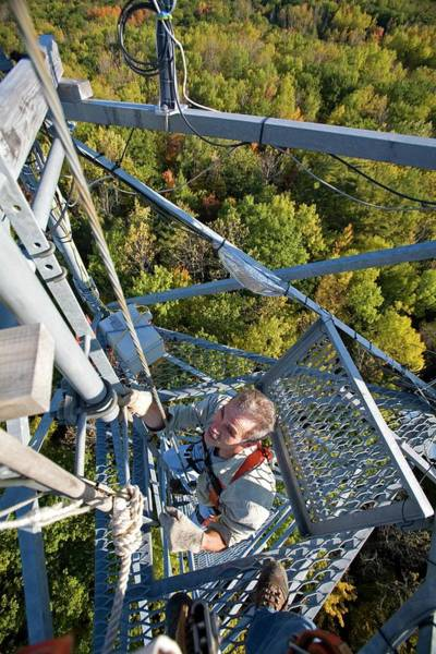 Climbing Plants Photograph - Climate Change Research by Jim West