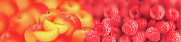 Wall Art - Photograph - Close Up Of Slices Of Fresh Peaches by Ikon Ikon Images