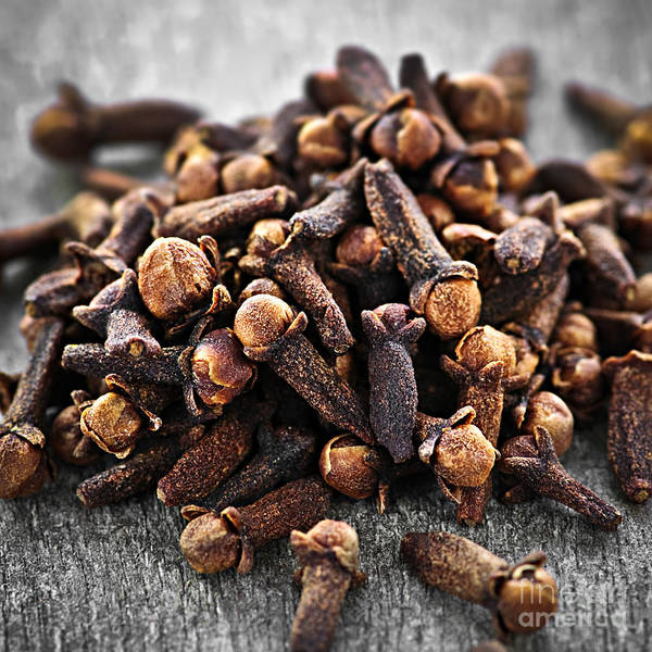 Flavours Wall Art - Photograph - Cloves by Elena Elisseeva