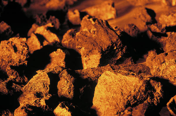 Fossil Fuel Photograph - Coal by Ton Kinsbergen/science Photo Library