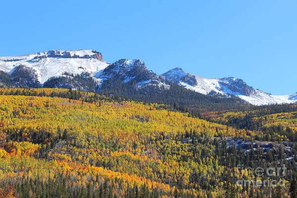Photograph - Colorado Autumn by Kate Avery