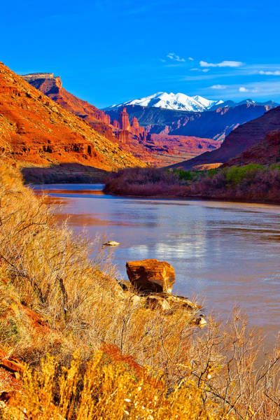 Photograph - Colorado River Reflections by Rick Wicker