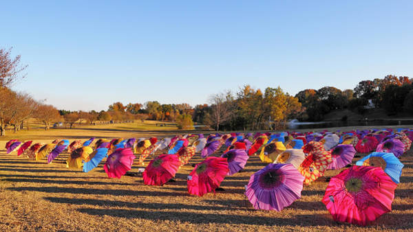 Photograph - Colorful Umbrellas At The Park by Simply  Photos