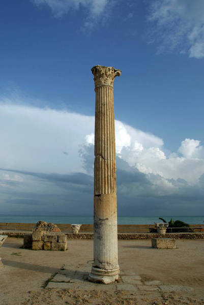 Wall Art - Photograph - Column At Baths Of Antoninus by Marco Ansaloni / Science Photo Library