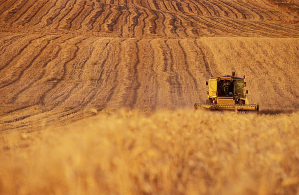 Wall Art - Photograph - Combine Harvester by Chris Sattlberger/science Photo Library