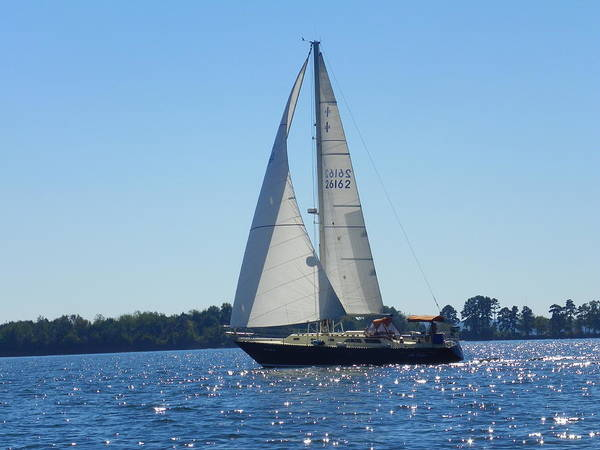 Photograph - Come Sail Away 2 by Lisa Wooten