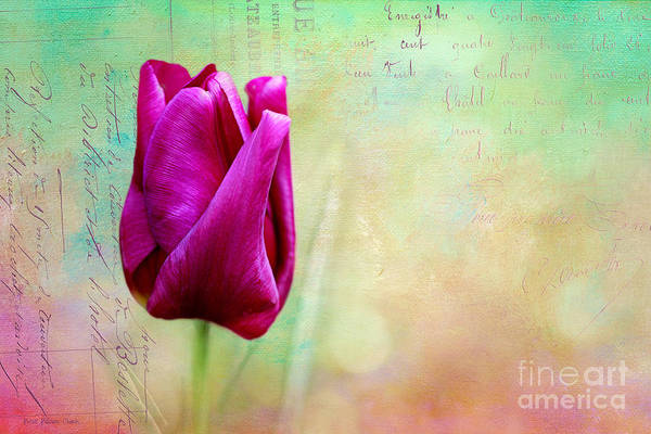 Photograph - Come Spring by Beve Brown-Clark Photography
