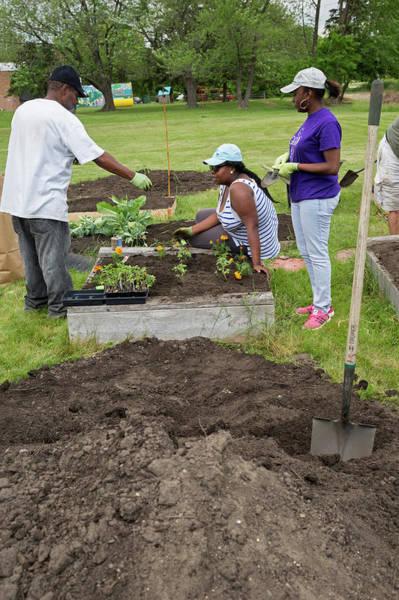 Trowel Photograph - Community Gardening by Jim West