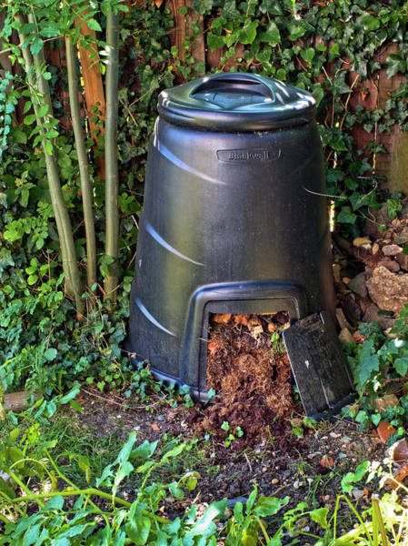 Wall Art - Photograph - Compost Bin by Gustoimages/science Photo Library