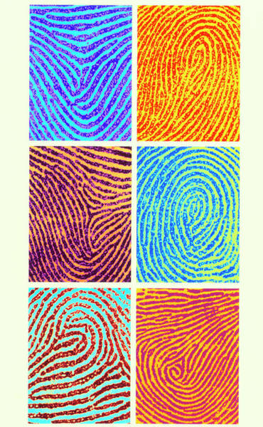 Wall Art - Photograph - Computer Artwork Of Coloured Fingerprints by Alfred Pasieka/science Photo Library