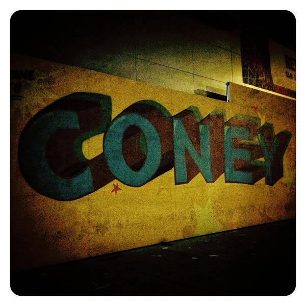 Photograph - Coney by Natasha Marco