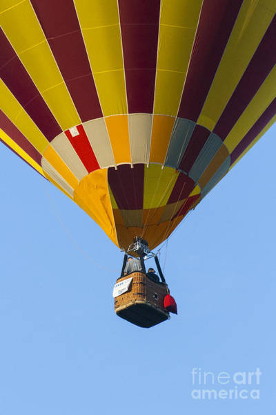 Photograph - Up Up And Away by Brian Roscorla