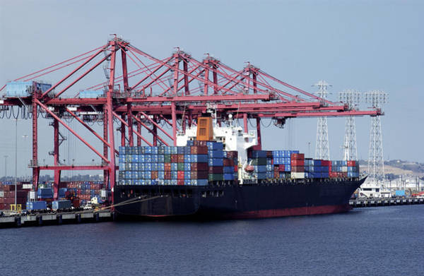 Freight Transport Wall Art - Photograph - Container Ship And Cranes by Steve Allen/science Photo Library