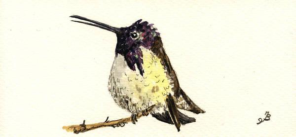 Small Birds Painting - Costa S Hummingbird by Juan  Bosco