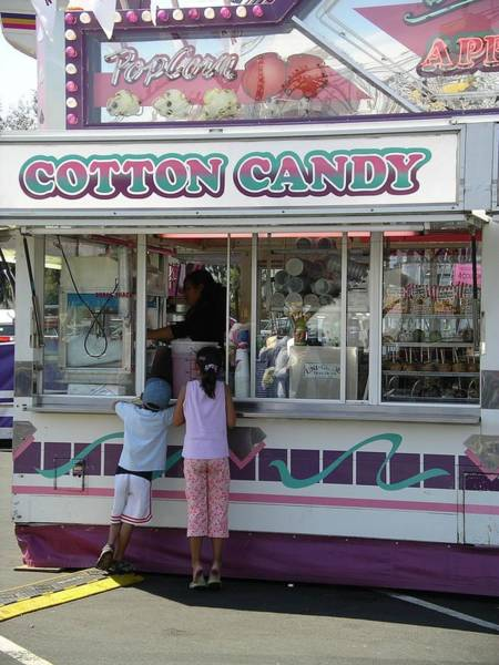 Photograph - Cotton Candy by Cynthia Marcopulos