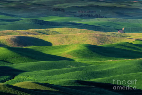 Wall Art - Photograph - Country Roads by Mike  Dawson