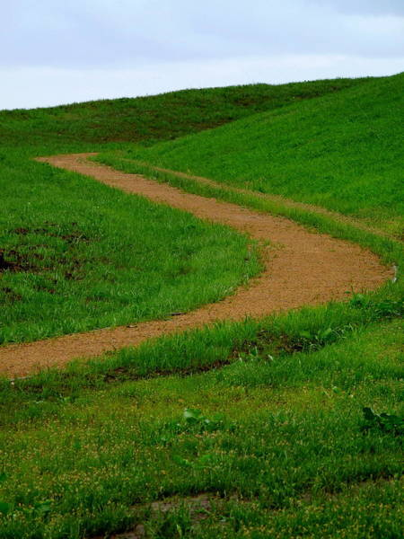 Photograph - Country Trail by Jeff Lowe