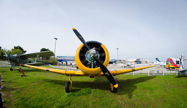 Photograph - North American T-6 Texan by Pablo Lopez