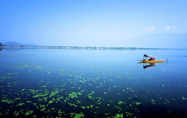 Dal Lake Photograph - Dal Lake by Clicked By Aalok