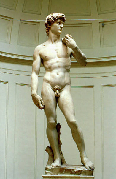Goliath Photograph - David By Michelangelo by Pasquale Sorrentino/science Photo Library