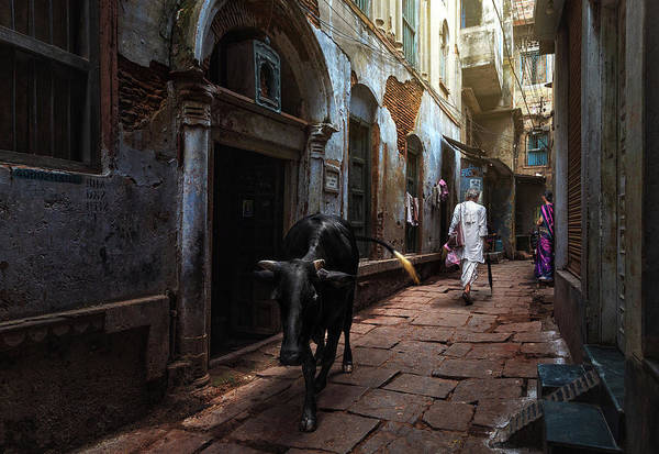Wall Art - Photograph - Day In Varanasi by Fadhel Almutaghawi