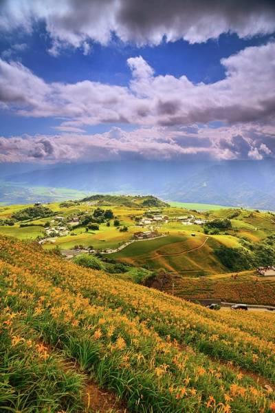 Freshness Photograph - Daylilies Field On Mountain Range With by Joyoyo Chen