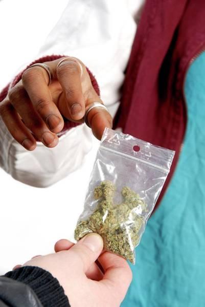 Handling Photograph - Dealing In Cannabis by Aj Photo
