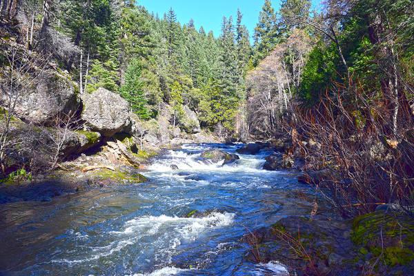 Photograph - Deer Creek by Frank Wilson