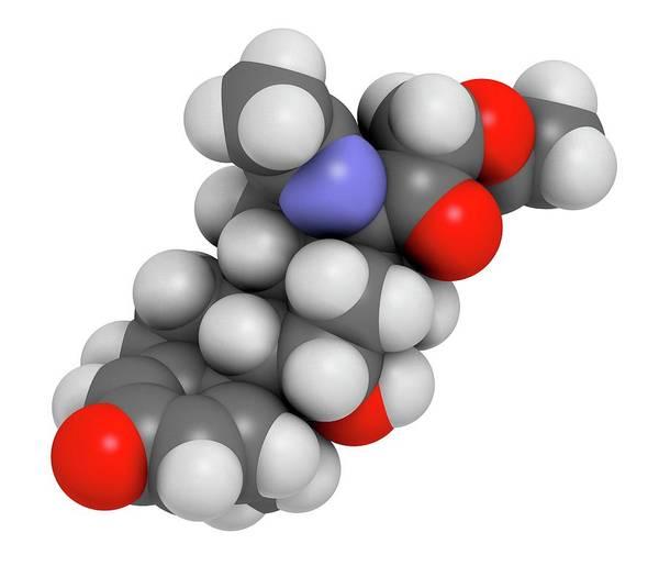 Wall Art - Photograph - Deflazacort Molecule by Molekuul/science Photo Library