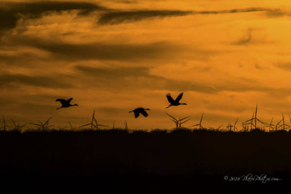 Photograph - Delta Sunset by Jim Thompson