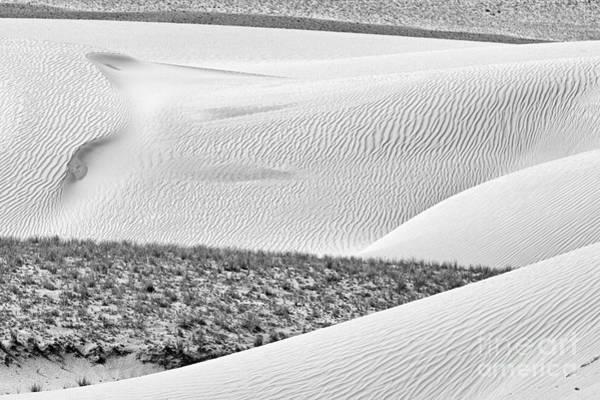 Photograph - Desert Abstract by Hitendra SINKAR