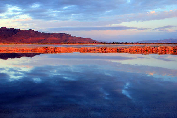 Photograph - Desert Reflection by Johnny Adolphson