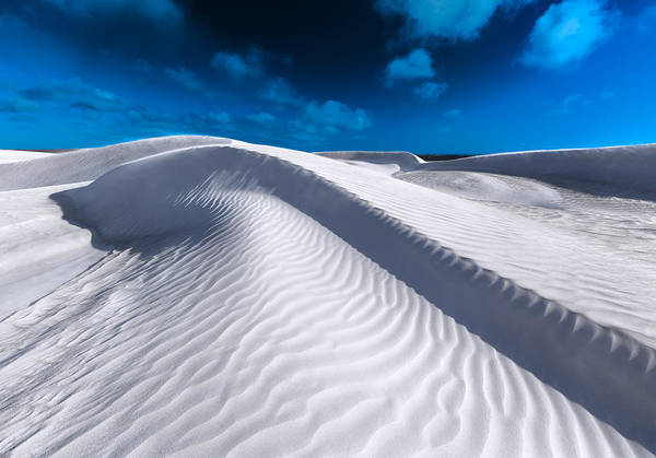Photograph - Desert Sands by Julian Cook