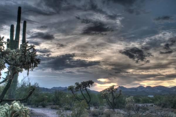 Photograph - Desert Sunset by Tam Ryan