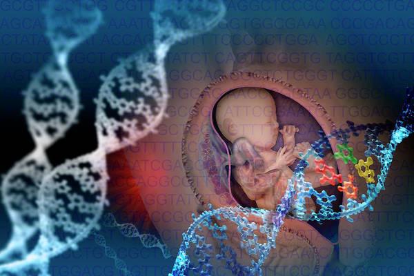 Genetic Code Photograph - Designer Dna by Carol & Mike Werner