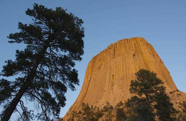Basalt Photograph - Devils Tower National Monument Wyoming by Kevin Schafer