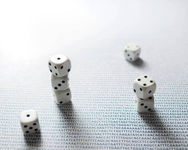 Genetic Code Photograph - Dice And Dna by Robert Brook