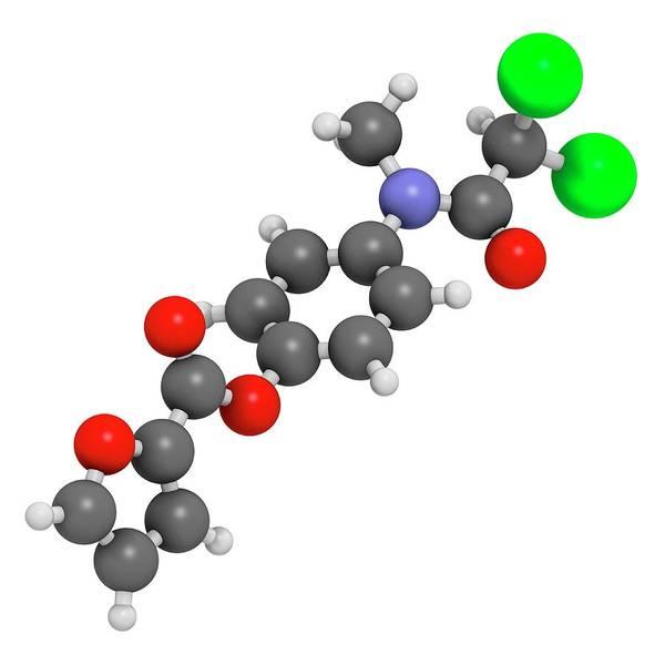 Amoebiasis Wall Art - Photograph - Diloxanide Furoate Amoebiasis Drug by Molekuul