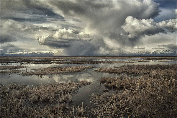 Anchorage Photograph - Distant Storm by Robert Fawcett