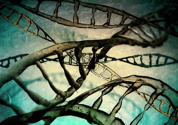 Biological Wall Art - Photograph - Dna Molecules by Richard Kail