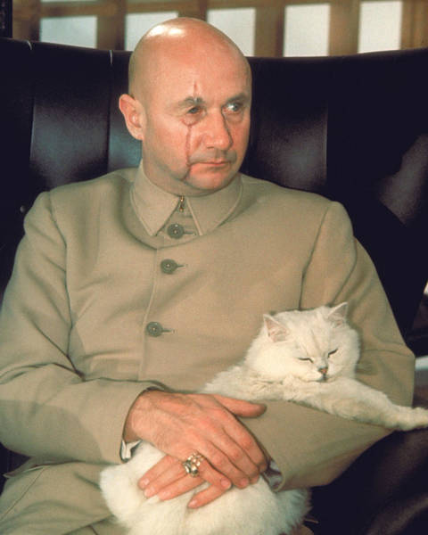 Donald Photograph - Donald Pleasence by Silver Screen
