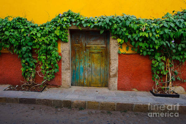 Photograph - Doorway In Mexico by John Shaw
