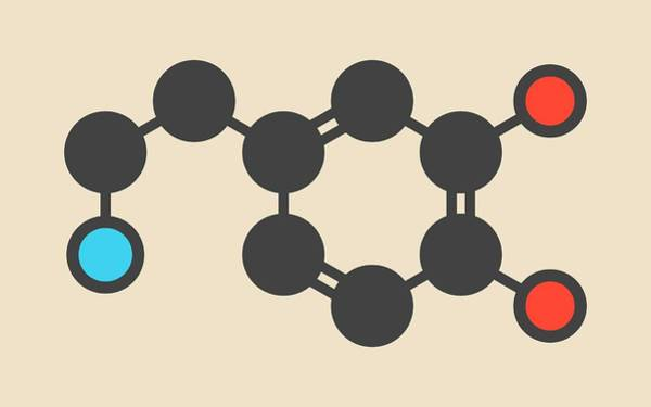 Neurotransmitter Wall Art - Photograph - Dopamine Neurotransmitter Molecule by Molekuul