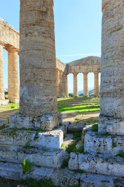 5th Photograph - Dorian Temple Of Segesta by Tom Norring