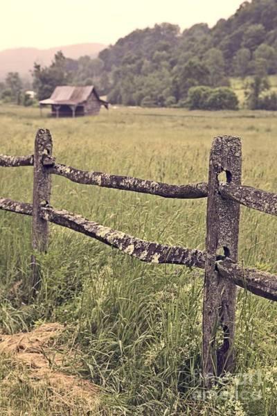 Photograph - Down On The Farm by Edward Fielding