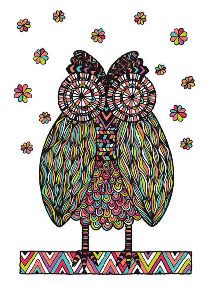 Owl Wall Art - Photograph - Dream Owl by MGL Meiklejohn Graphics Licensing