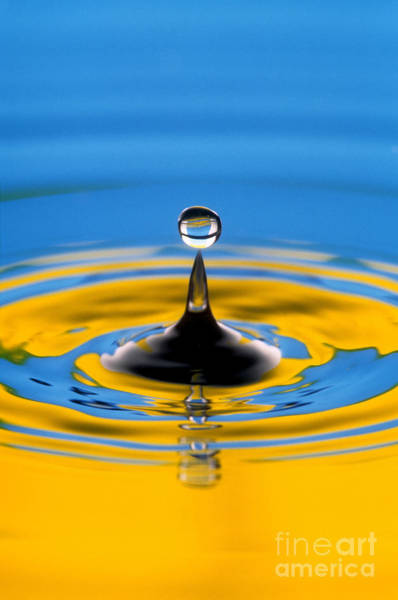 Photograph - Drop Of Water by Novastock