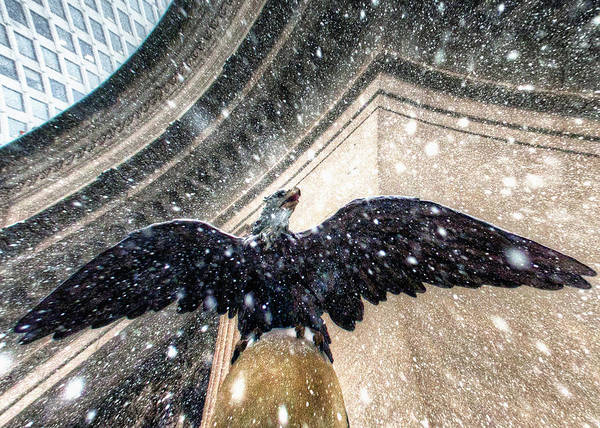 Photograph - Eagle Grand Central Snow by Dave Beckerman
