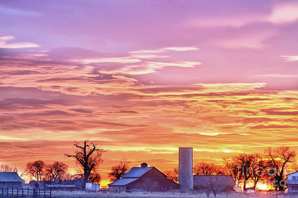 Photograph - Early Country Morning Sunrise by James BO Insogna