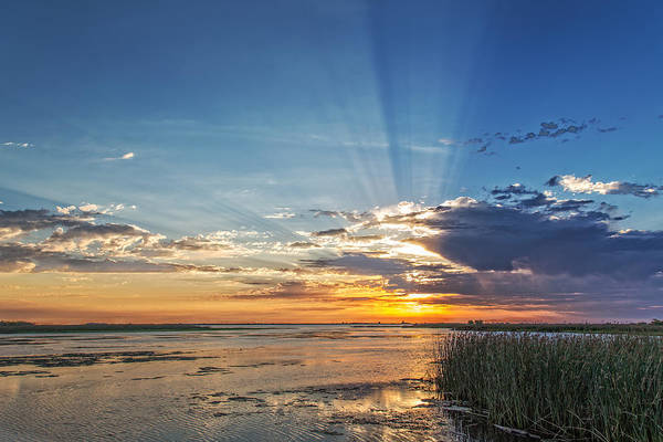 Early Morning Sun Rays Art Print